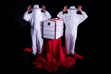 Artizani present Bees! an installation at The Big Splash