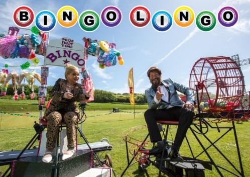 Wild 'n' Beets: Bingo Lingo